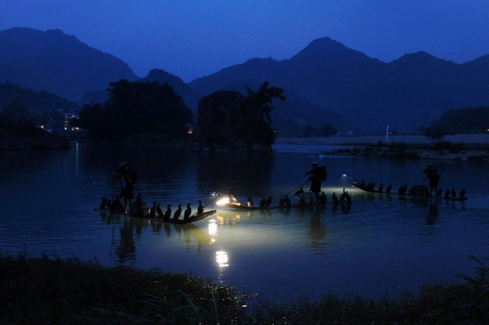 Local men fish with cormorants perched on their boats at an ancient village in Yongjia County